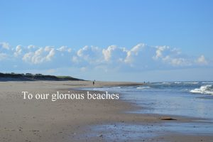 glorious beaches