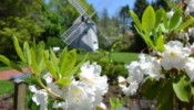 Heritage Gardens Cape Cod