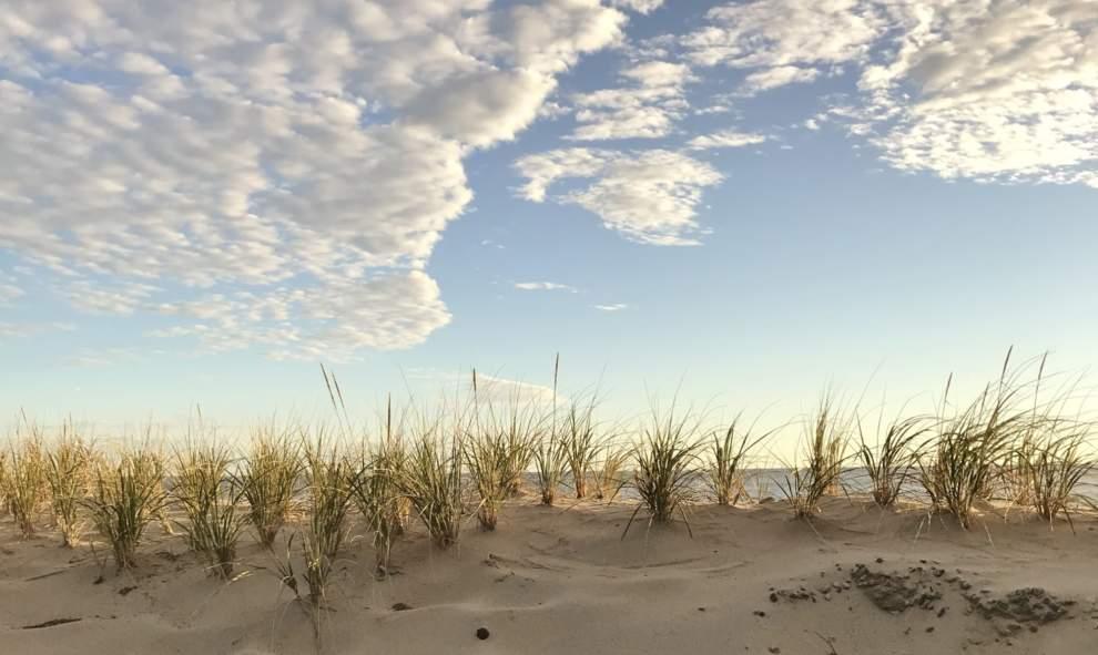 Nauset Beach, Orleans MA